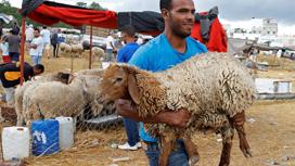 أسعار الخراف تنغّص فرحة العيد لدى السودانيين... فهل من حلول؟