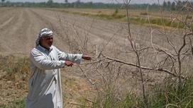 الأردن يعاني... محاصيل الزراعة ماتت والأسوأ لم يأت بعد