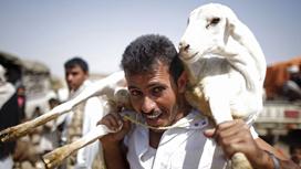 الأضحى في اليمن... أوضاع صعبة والكبش يساوي ثلاثة رواتب